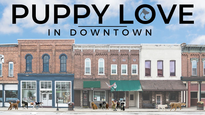 Puppy Love in Downtown